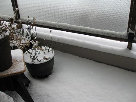 吹雪のベランダ