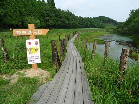 樫原湿原(2)