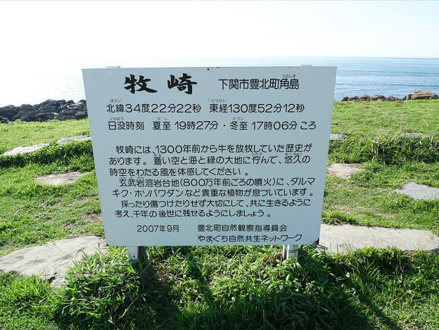角島~牧崎風の公園(6)