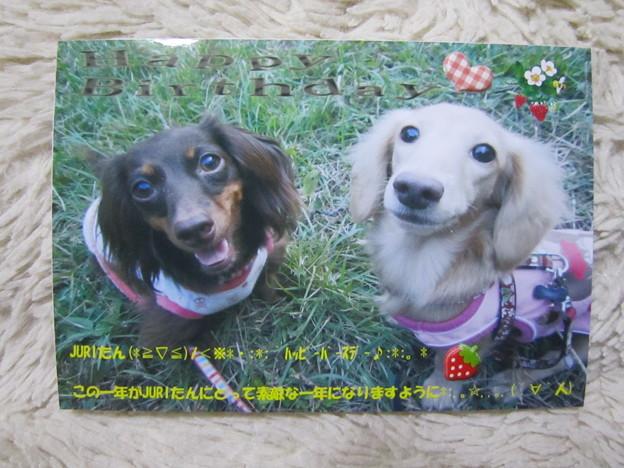写真: 20100925 004