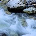渓流  姥が滝への道(白山スーパー林道)