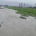 写真: 増水中。