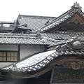 屋根に猫2