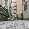Photos: 神楽坂 - 牛の視点1