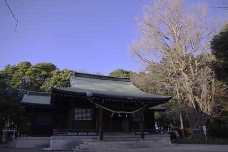 峯ケ岡八幡神社と青空