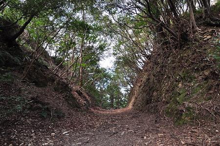 国道260号線・中坂隧道旧道-5