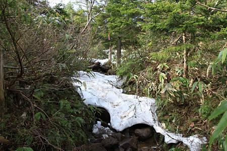 燧ケ岳_20100611-070059