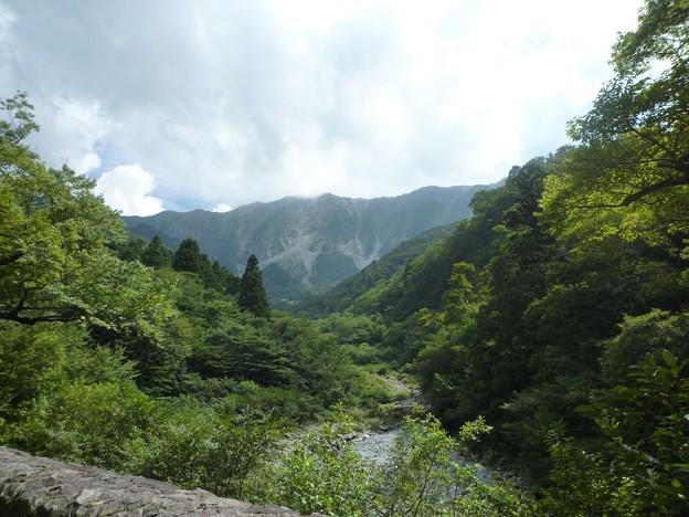 金門より見る大山北稜