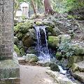 Photos: 水路閣の脇